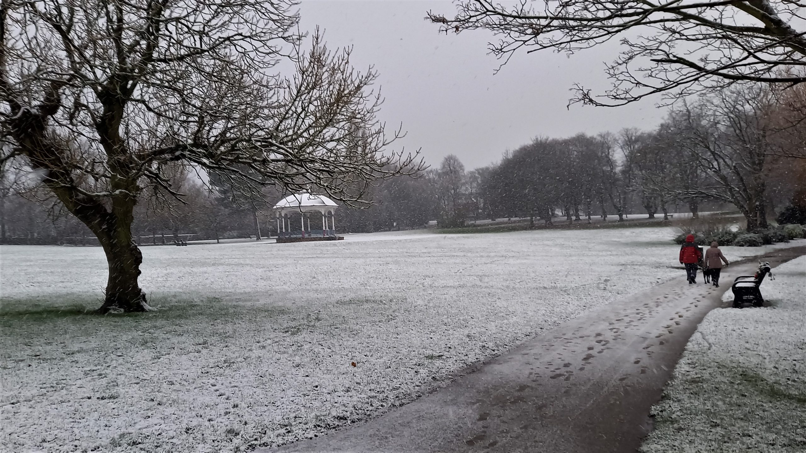 6 Ash tree and bandstand in snow (2)