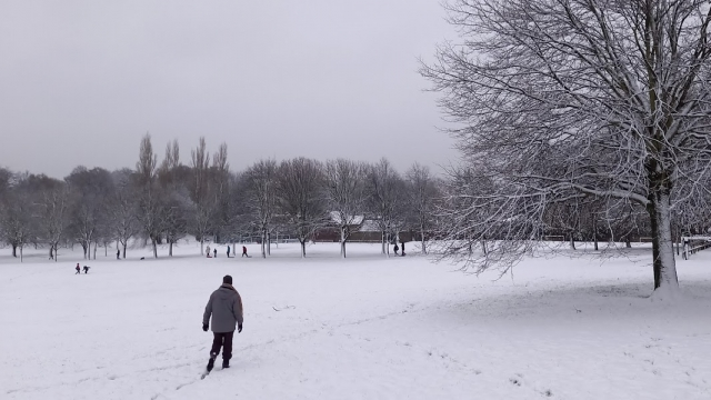 1 Walking into snowy Locke Park