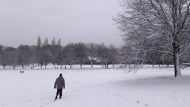 1 Walking into snowy Locke Park