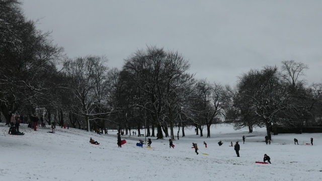 6 Sledging on hillside