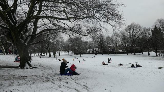7 Sledging in Locke Park